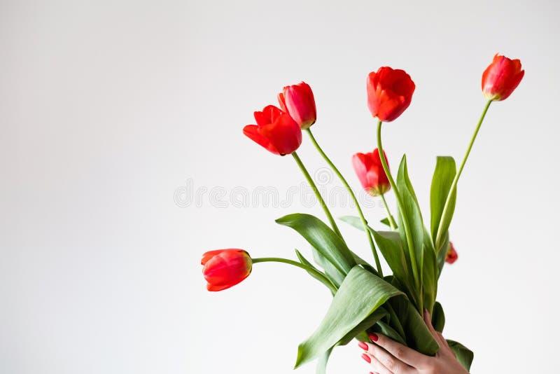 Ramo floristry del arte del tulipán de la flor roja de la primavera imagenes de archivo