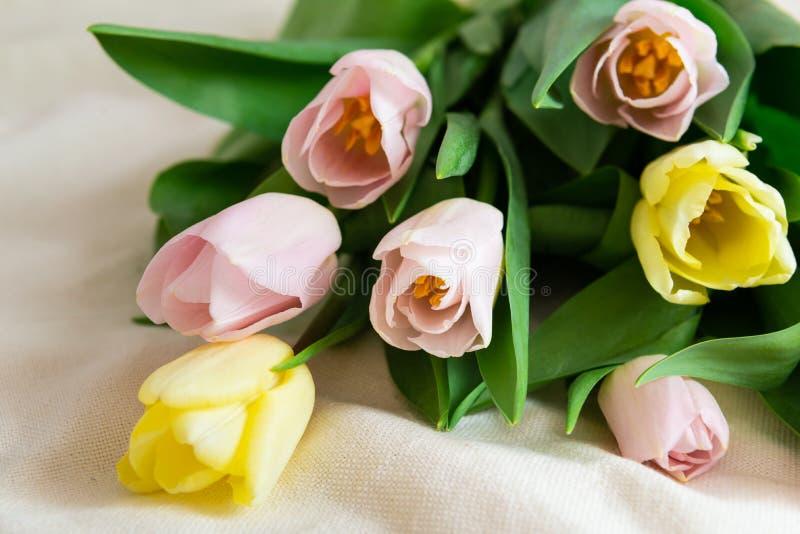 Ramo fresco de rosa y de tulipanes amarillos en fondo ligero Concepto del día de fiesta Regalo de la primavera fotografía de archivo