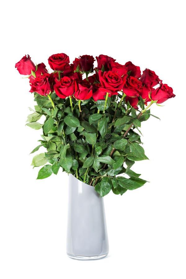 Ramo grande de rosas rojas vivas hermosas con los altos troncos en florero de cerámica gris Aislado en el fondo blanco fotografía de archivo