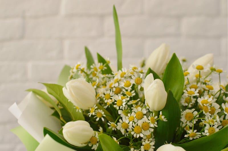 Ramo hermoso con los tulipanes y los camomiles blancos imagenes de archivo
