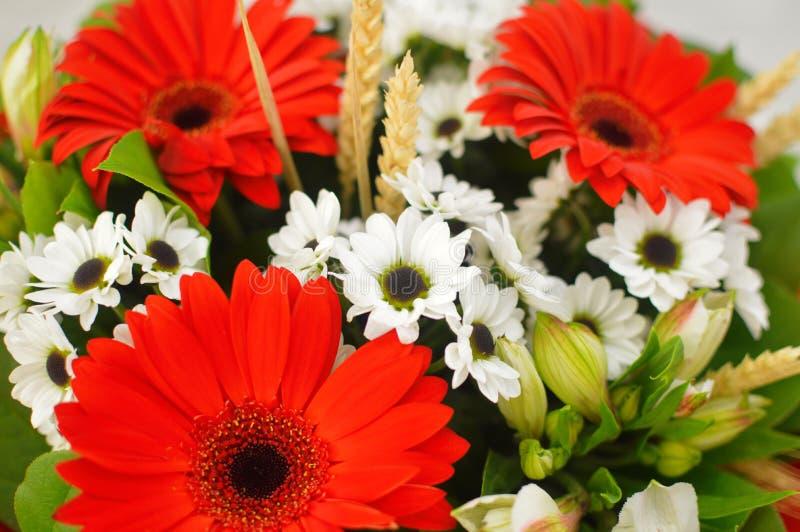 Ramo hermoso de flores coloridas foto de archivo libre de regalías
