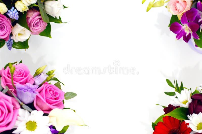 Ramo hermoso de flores coloridas en un cierre blanco del fondo foto de archivo libre de regalías
