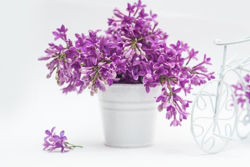 Ramo hermoso de lila en cesta en un fondo blanco fotos de archivo libres de regalías