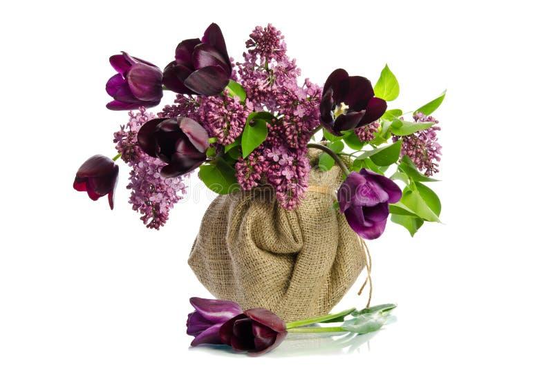 Ramo hermoso de tulipanes con las puntillas de la lila fotos de archivo