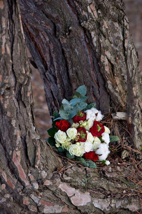 Ramo hermoso del invierno de picea, de rosas y de algodón El ramo del ` s de la novia fotos de archivo libres de regalías