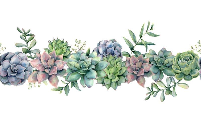 Ramo inconsútil de los succulents de la acuarela Cactus pintados a mano, hojas verdes, violetas, rosadas del eucalipto y ramas ai ilustración del vector