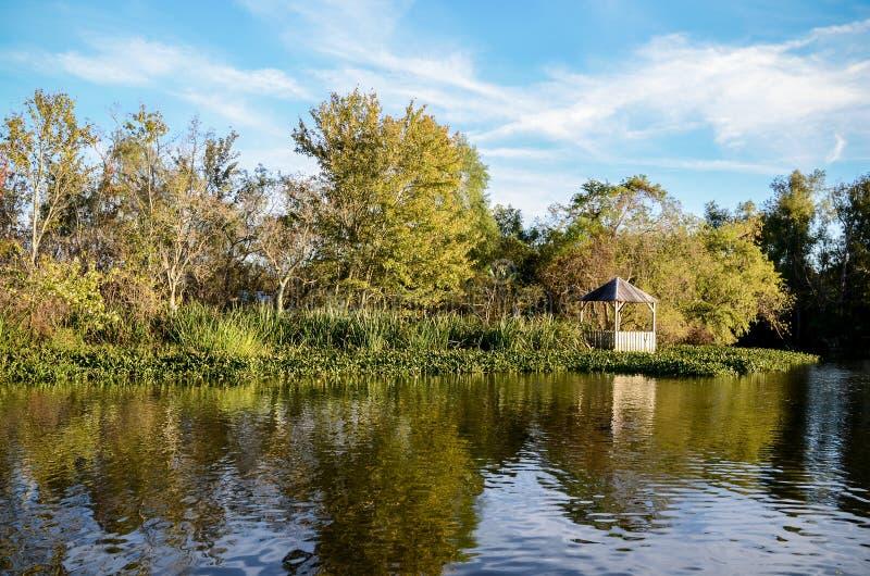 Ramo paludoso di fiume della Luisiana fotografia stock