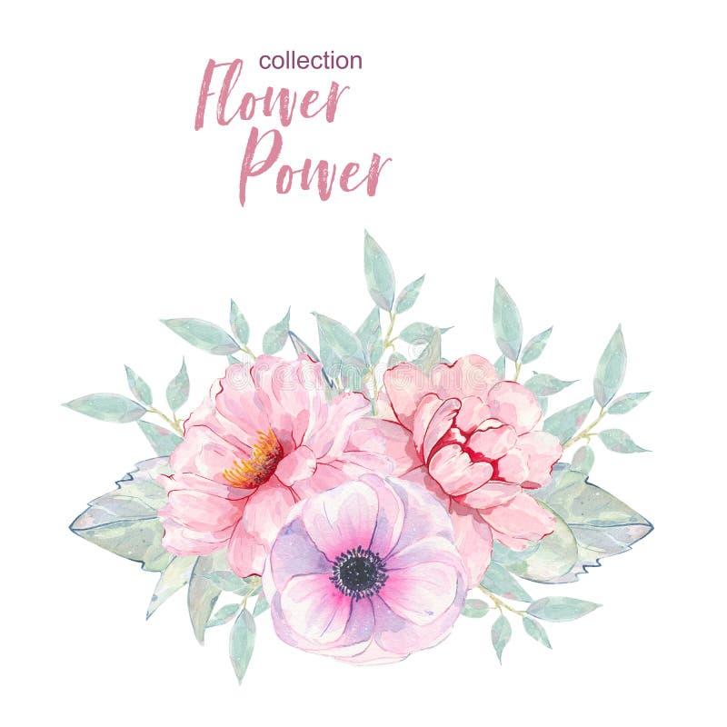 Ramo pintado a mano de la anémona y de la peonía del rosa de la flor de la acuarela aislado stock de ilustración