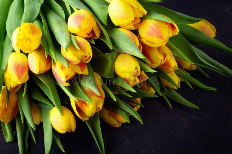Ramo rojo amarillo de los tulipanes de la flor de la primavera imágenes de archivo libres de regalías