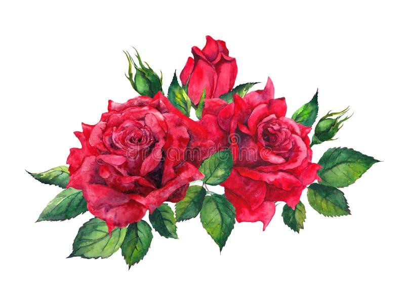 Ramo rojo de las rosas Ejemplo aislado de la acuarela stock de ilustración