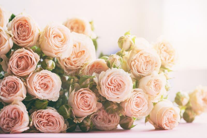 Ramo rosado de las flores de las rosas en fondo de la luz del sol de la mañana Concepto de la celebración del día de fiesta fotos de archivo libres de regalías