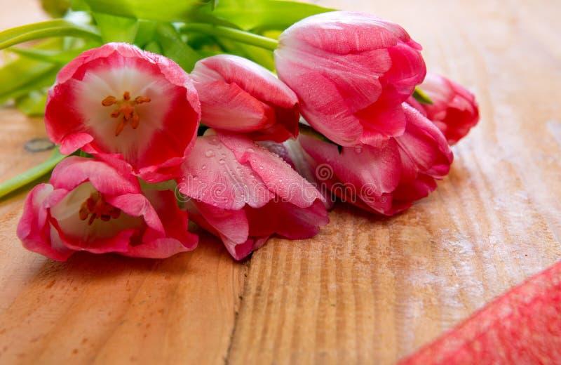 Ramo rosado del tulipán foto de archivo