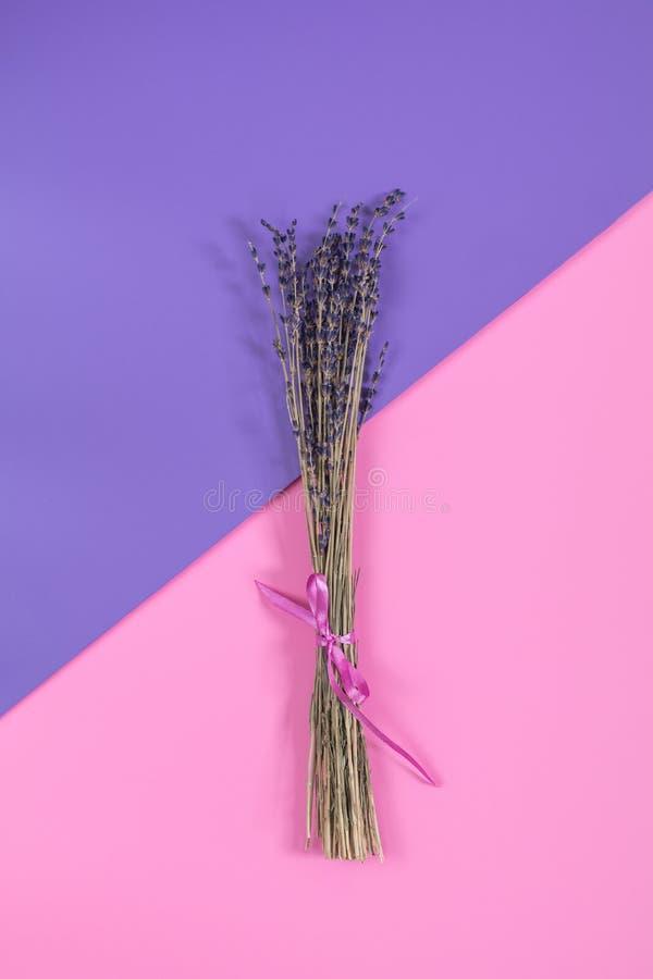 Ramo secado hermoso de la lavanda en la superficie rosada violeta fotografía de archivo libre de regalías