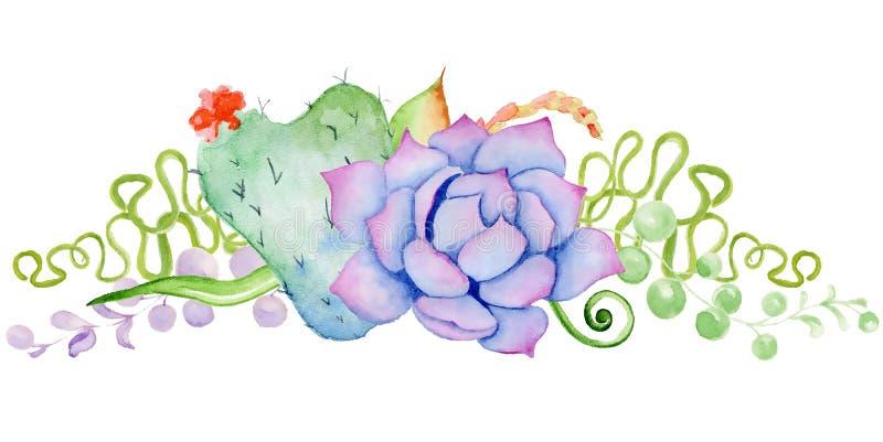 Ramo suculento Actus del ¡de Ð en la forma de un corazón libre illustration
