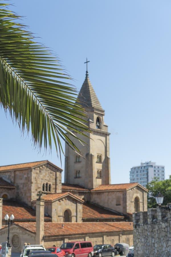 Ramo verde della palma contro il contesto di vecchia chiesa cattolica antica immagini stock libere da diritti