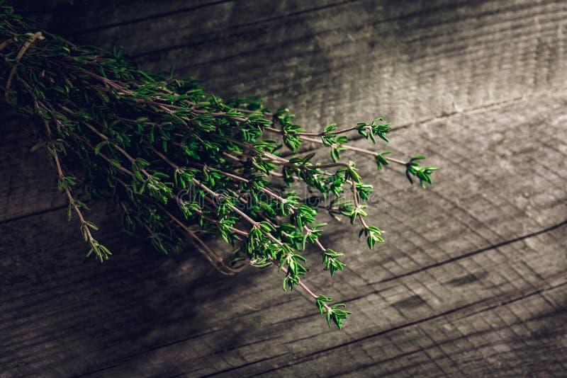 Ramo verde fresco del timo sui precedenti di legno fotografie stock