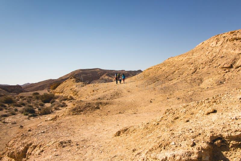 Ramon Crater, oued Ardon photos libres de droits