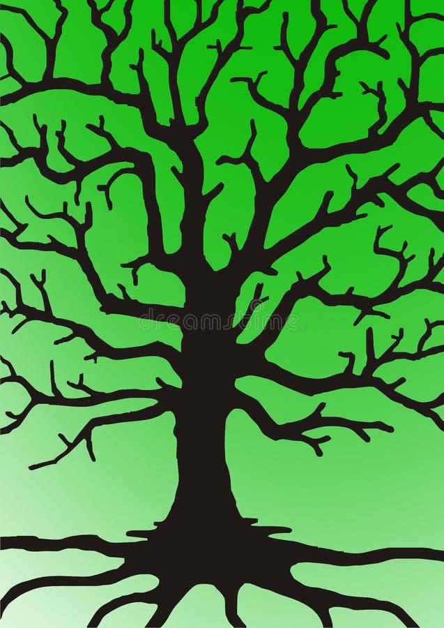 Ramos da árvore imagem de stock royalty free