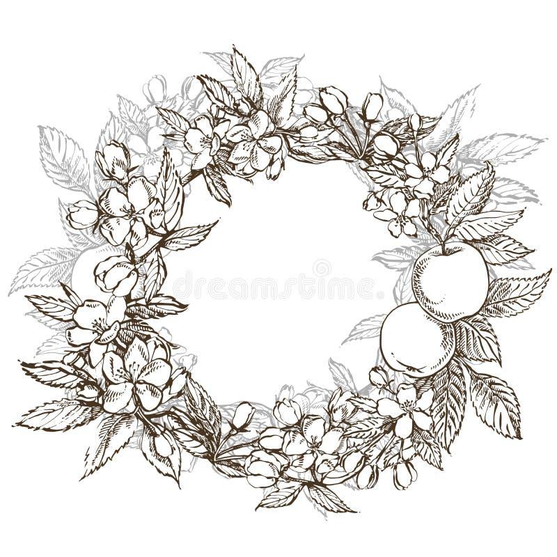 Ramos da flor da maçã Grinalda floral Beira redonda gráfica ilustração stock