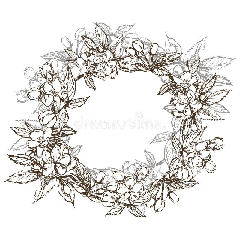 Ramos da flor da maçã Grinalda floral Beira redonda gráfica ilustração royalty free