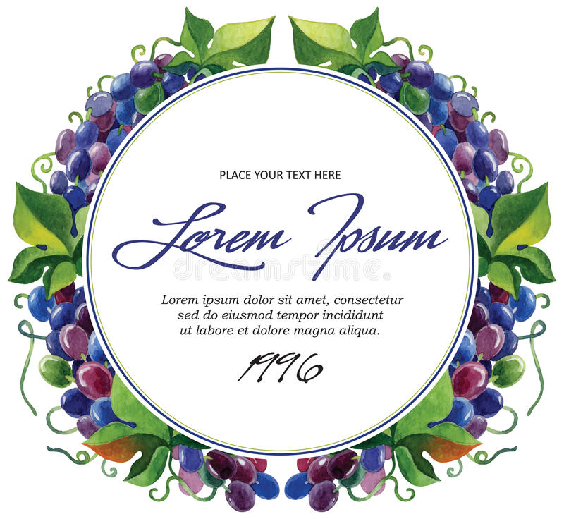 Ramos da uva para vinho do molde da etiqueta do vetor com ilustração stock