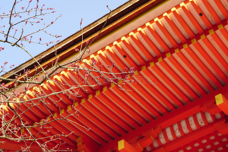 Ramos de árvore com vermelho japonês tradicional sob o backgroun do telhado fotografia de stock