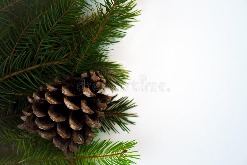 Ramos de árvore do abeto da decoração do Natal com o cone do pinho no fundo branco isolado Copie o espaço Cartão do Natal e do an imagens de stock
