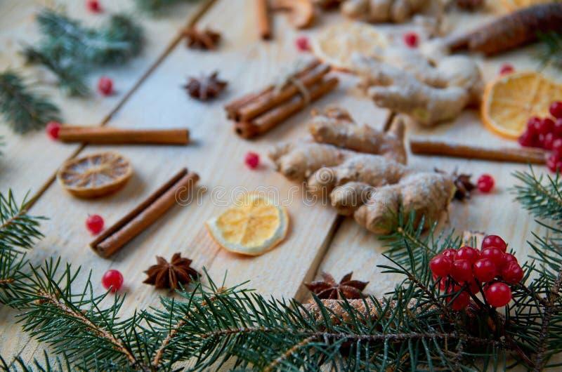 Ramos de árvore do Natal com as bagas vermelhas cruas do viburnum no primeiro plano Especiarias pulverizadas tradicionais para o  imagens de stock