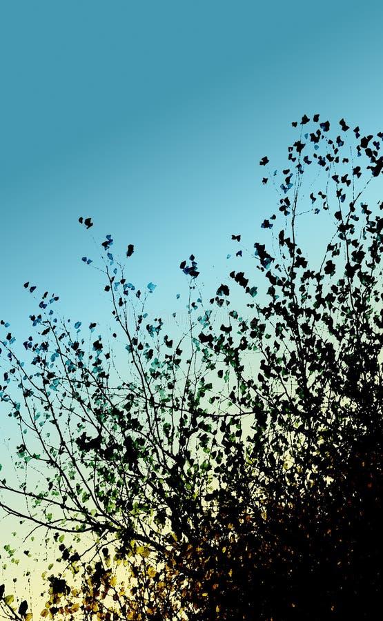 ramos de árvore e céu azul Água-coloridos de luz do dia fotos de stock royalty free