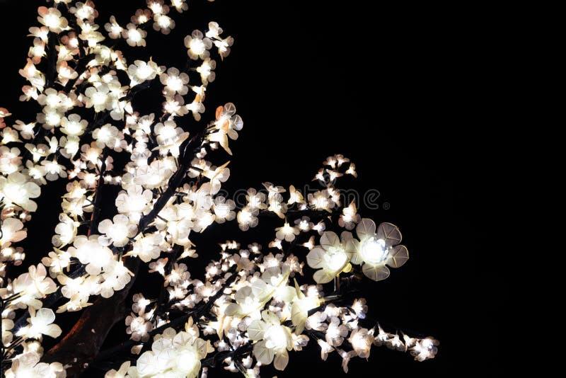 Ramos de árvore iluminados pelas luzes de Natal que decoram as ruas de Agueda Portugal imagens de stock royalty free