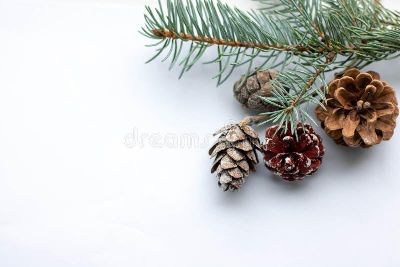 ramos de abeto snowy Quadro de Natal e local para o texto fotografia de stock royalty free