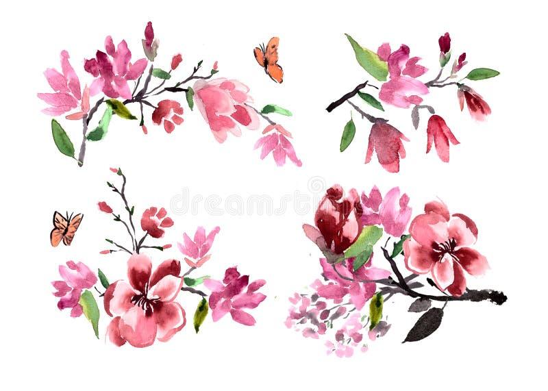 Ramos de acuarela de la magnolia de las flores pintada stock de ilustración