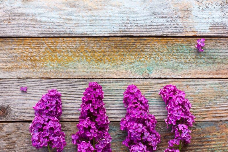 ramos de flores lilás roxas no fundo de madeira da prancha fotografia de stock