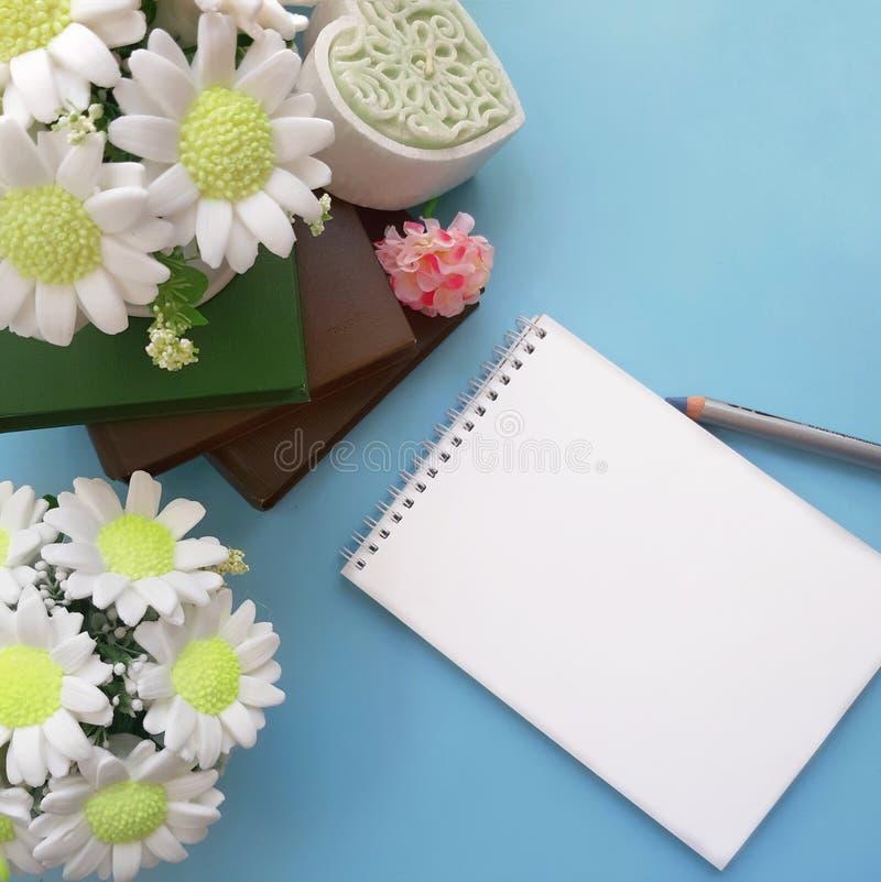 Ramos de las flores del jabón, libreta en blanco con el lápiz, libros en fondo azul claro imagen de archivo libre de regalías