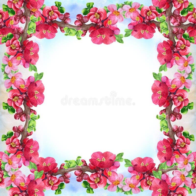 Ramos de uma árvore de florescência Teste padrão sem emenda wallpaper Use materiais impressos, sinais, cartazes, cartão, empacota ilustração royalty free