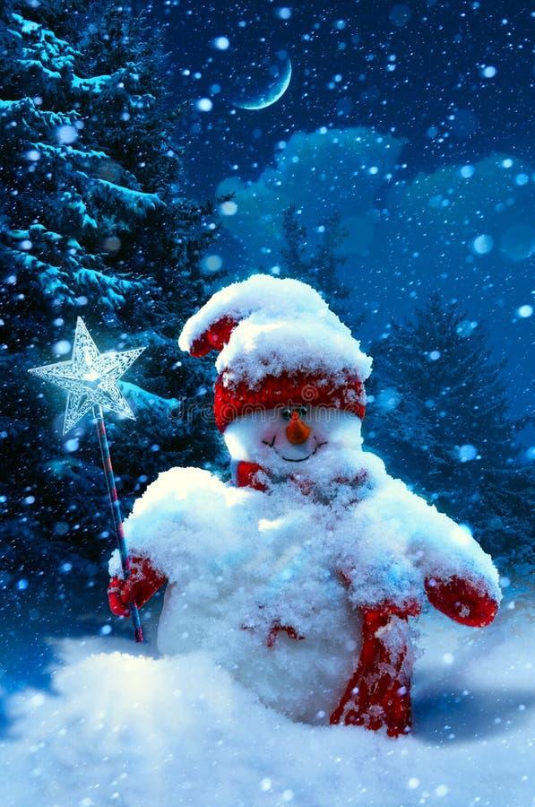 Ramos do boneco de neve e do abeto do Natal cobertos com a neve