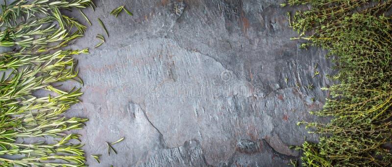 Ramos do tomilho e dos alecrins no tela panorâmico de pedra da tabela foto de stock