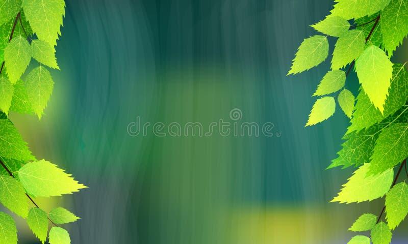 Ramos do vidoeiro e fundo chuvoso ilustração stock