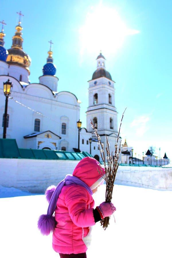 Ramos Domingo en Siberia foto de archivo libre de regalías