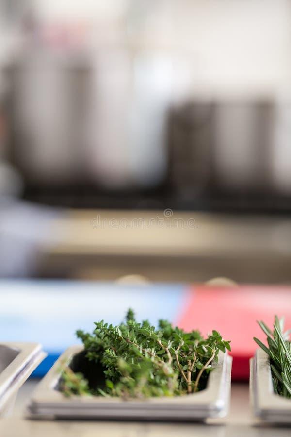 Ramos frescos dos alecrins em um contador de cozinha imagens de stock royalty free