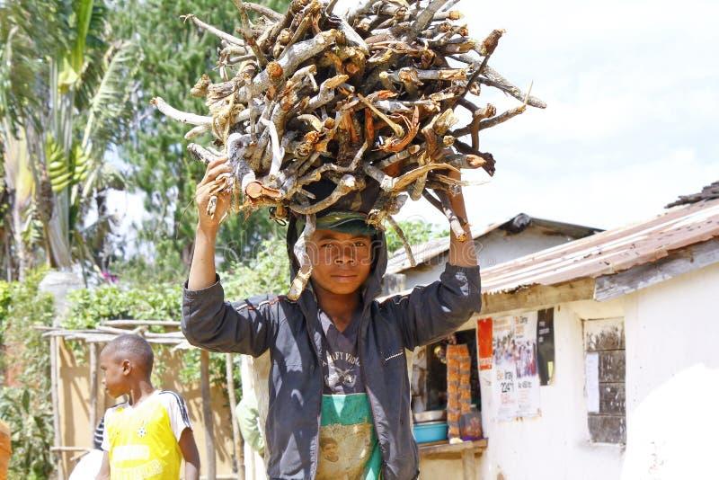 Ramos levando dos povos malgaxes desconhecidos nas cabeças - pobreza foto de stock