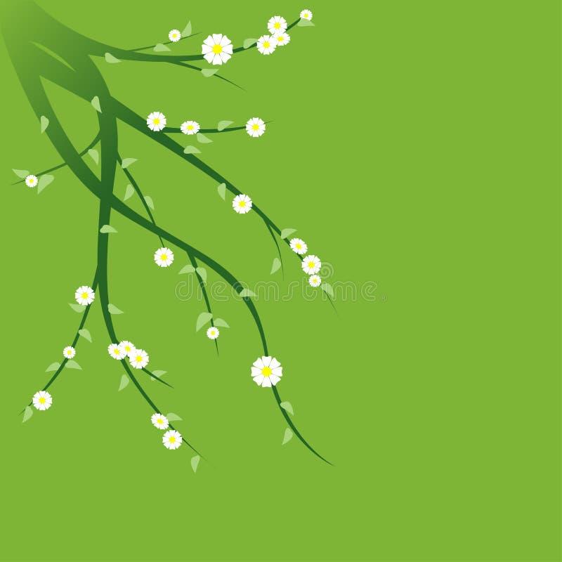 Ramos verdes de florescência ilustração stock