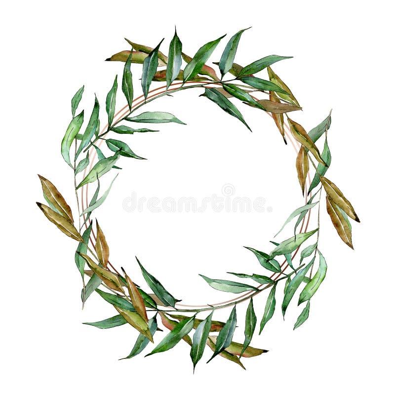 Ramos verdes do salgueiro Grupo da ilustra??o do fundo da aquarela Quadrado do ornamento da beira do quadro ilustração do vetor