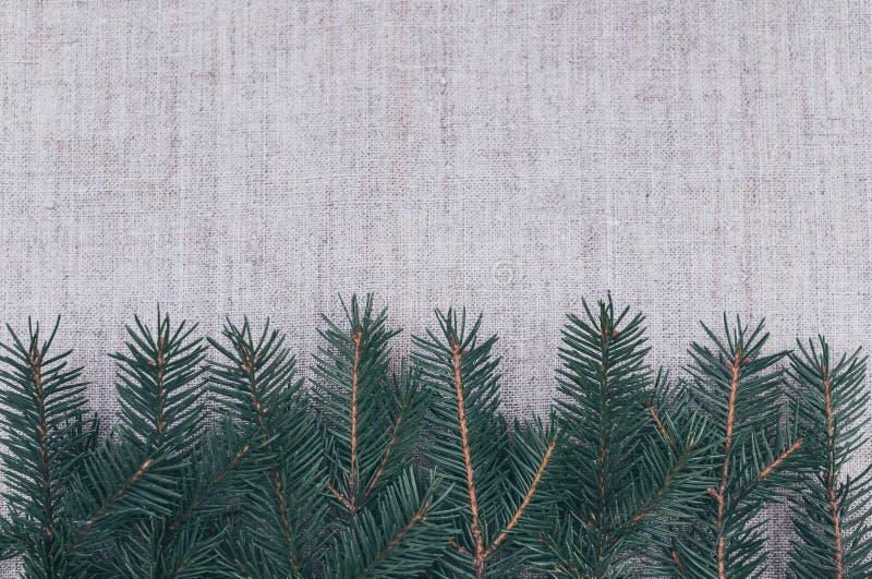Ramos verdes frescos de agulhas do pinho na perspectiva do linho Fundo do inverno imagens de stock royalty free