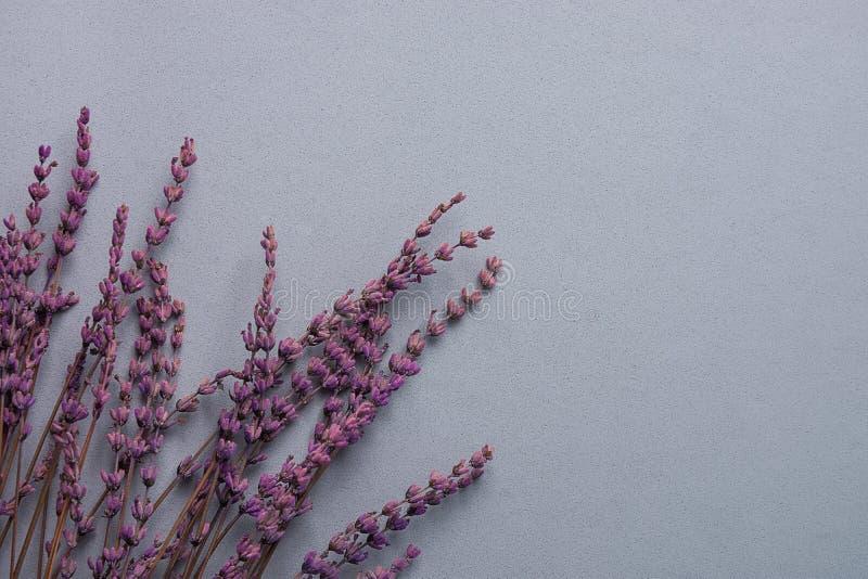 Ramoscelli dei fiori della lavanda su Grey Stone Background nello stile d'annata Concetto di nozze di giorno del ` s della madre  immagini stock libere da diritti