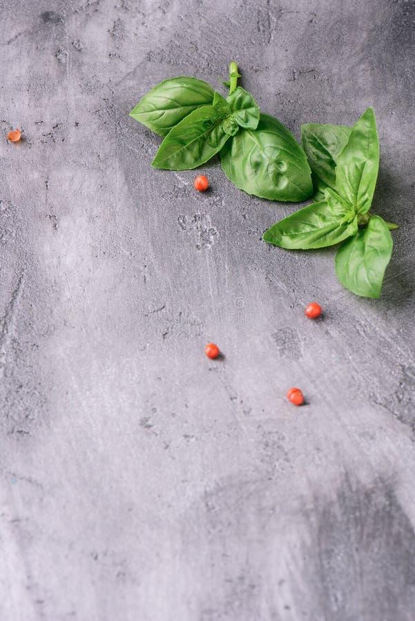 Ramoscelli del basilico su una superficie di calcestruzzo fotografia stock