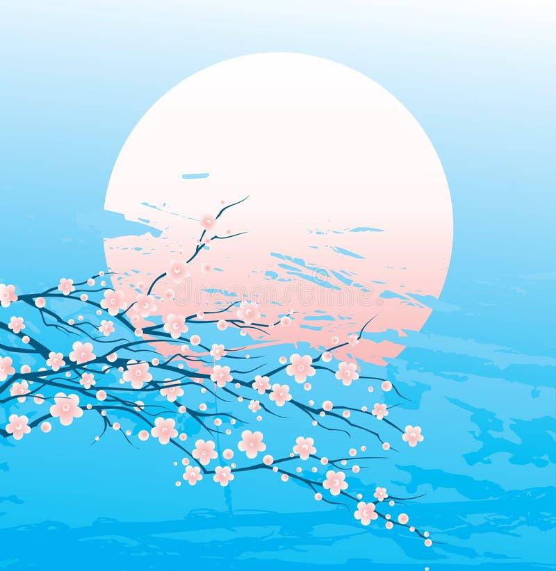 Ramoscelli della ciliegia in fioritura illustrazione vettoriale