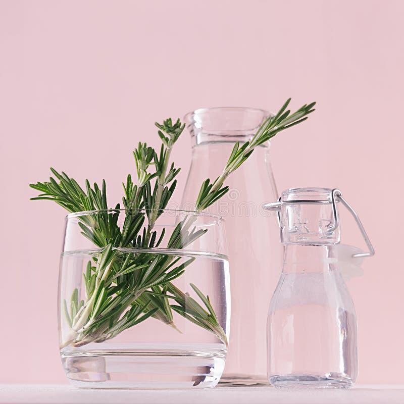 Ramoscelli verdi dei rosmarini in vaso di vetro e bottiglie d'annata come a casa decorazione su fondo pastello rosa molle, quadra fotografia stock libera da diritti