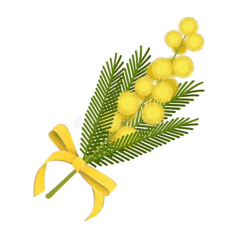Ramoscello della mimosa con l'arco giallo del nastro royalty illustrazione gratis