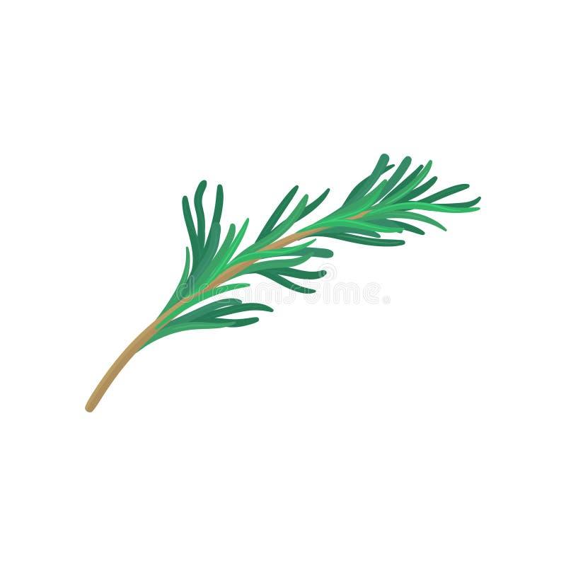 Ramoscello verde di dragoncello Prodotto naturale Icona piana di vettore della pianta utilizzata in culinario Tema delle spezie e illustrazione di stock